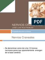 nervioscraneanos-111020215859-phpapp02