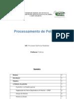 Processamento de Petroleo - Escrito
