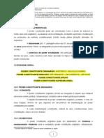 1+PODER+CONSTITUINTE (1).doc