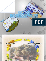 ciclo biogeoquimico (1) (1)