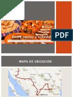 Entre Cortes y Viñedos