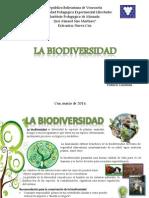 Lamina Biodiversidad.