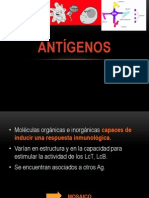alergo1