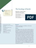 Sociology of Suicide