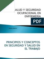 Presentacion Salud y Seguridad Ocupacional