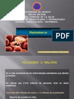 plasmodium-100602182519-phpapp02