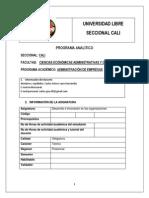 Programa Desarrollo e Innovacion de Las Organizaciones