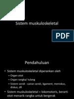 7. Sistem muskuloskeletal.pdf