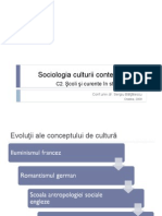 Sociologia culturii Curs 2