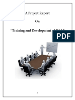 31187389 a Project Report on Training and Development of HAL