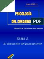 Tema 5 Psicologia Del Des Arrollo