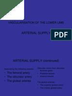 Vascularisation of the Lower Limb