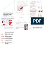 60995241 Triptico El Sistema Muscular