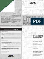 report litio.pdf