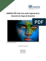 America Del Sur Una Vision Regional de La Sit de Riesgo