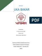REFERAT Luka Bakar