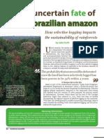 SSM Winter 2007 EthPol Brazil Amazon