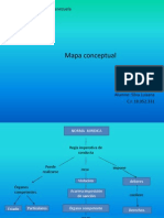 Mapa Conceptual de La Norma Juridica
