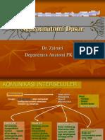 Senin Dr Zainuri Dasar Dasar Neuroanatomi