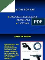 lesiones por PAF- CONFERENCIA 2014.ppt