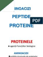 3_4 Aminoacizi Peptide