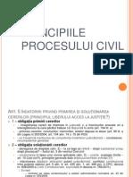 Slide 2 - Principiile Procesului Civil