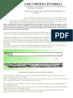 LA FLAUTA DE CORTEZA ENTERIZA.doc