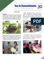 Nos Trilhos do Desenvolvimento - Ano 1 - nº 12