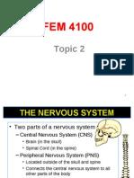 Topic 2 Brain Anatomy