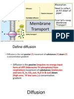 membrane transport revision