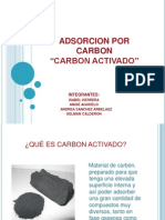 Adsorcion Por Carbon