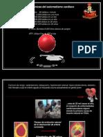Bases iónicas del aut. cardiaco TM