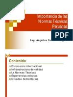 Importancia de Las Normas Tecnicas Peruanas