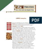 Ricette - Il Paniere Di Cerere - Storia e Ricette Della Cucina Regionale Italiana