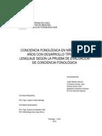 seminario  Conciencia Fonologica
