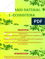 2.1 ECOSISTEMA