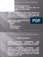 GEOMORFOLOGI PINGGIR PANTAIe