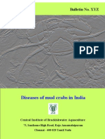 Diseases of mud crab in India