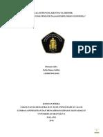 Makalah Pengolahan Data Seismik - Aplikasi Fungsi Matematis - Bella Dinna Safitri 115090700111002