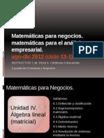 MatemáticasparaNegocios U IV Ago-Dic 2012 EscuelaNegocios