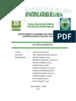 Informe Grupal de Nutricion Mineral