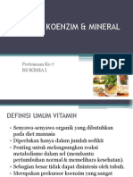 Vitamin Koenzim & Mineral2
