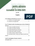 45197513 Premise Pentru Aderarea Romaniei La Zona Euro Copy