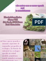 introducerea_de_catre_om_a_unor_specii_noi_in_ecosisteme_ardelean_simina_clasa_a_viiia(1).pptx