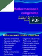 Malformaciones congénitas renales