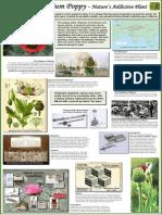 Opium.history.poster.dea