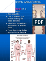 1. Clase Neuroanatomia