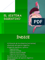 ud6 sistema digestivo