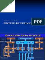 1-Metabolismodepurinas.pdf