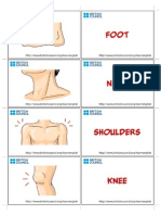 Body Flashcard3